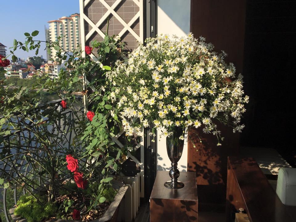 mua cuc hoa mi go cua, bo tui ngay cach trang tri cho ngoi nha them tinh khoi hinh anh 9