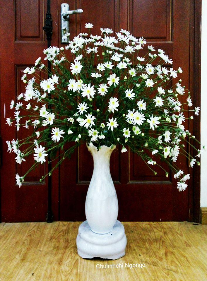 mua cuc hoa mi go cua, bo tui ngay cach trang tri cho ngoi nha them tinh khoi hinh anh 7