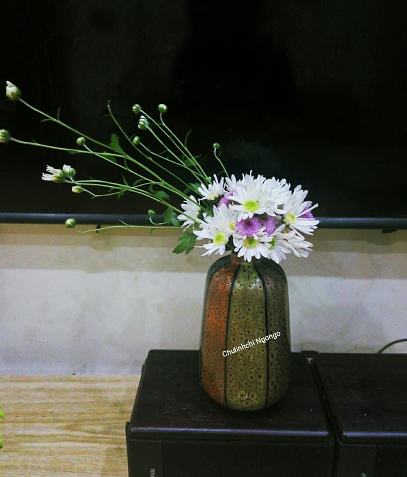 mua cuc hoa mi go cua, bo tui ngay cach trang tri cho ngoi nha them tinh khoi hinh anh 11