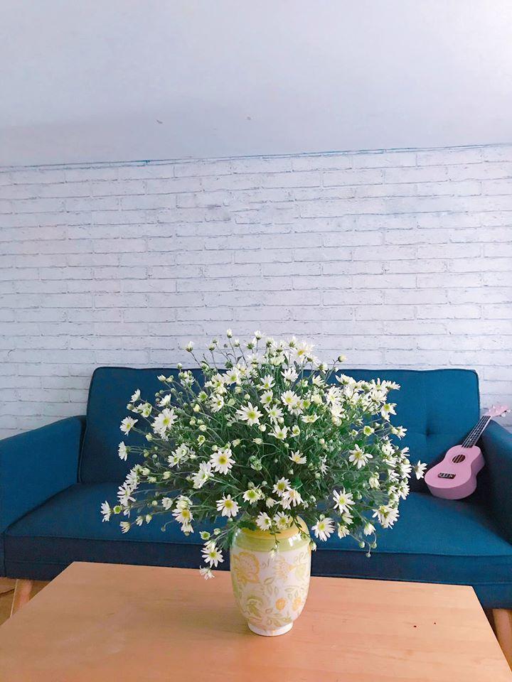 mua cuc hoa mi go cua, bo tui ngay cach trang tri cho ngoi nha them tinh khoi hinh anh 4
