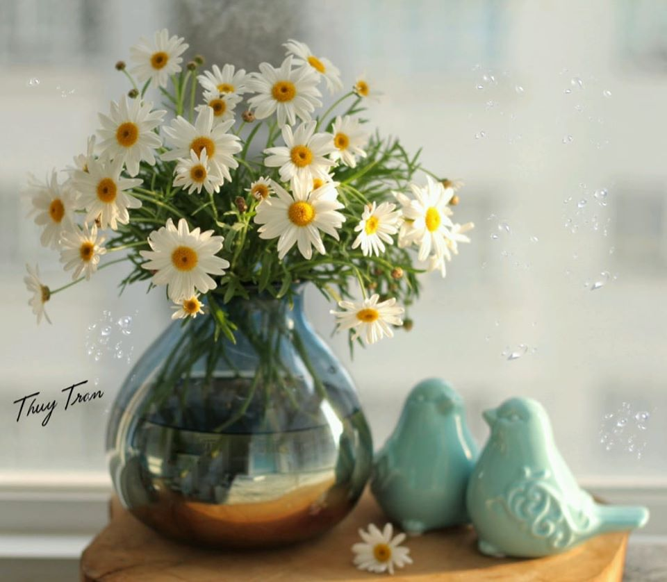 mua cuc hoa mi go cua, bo tui ngay cach trang tri cho ngoi nha them tinh khoi hinh anh 3