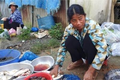 Chợ 'chồm hổm' độc đáo ở An Giang, họp chỉ 1 tiếng là 'giải tán'