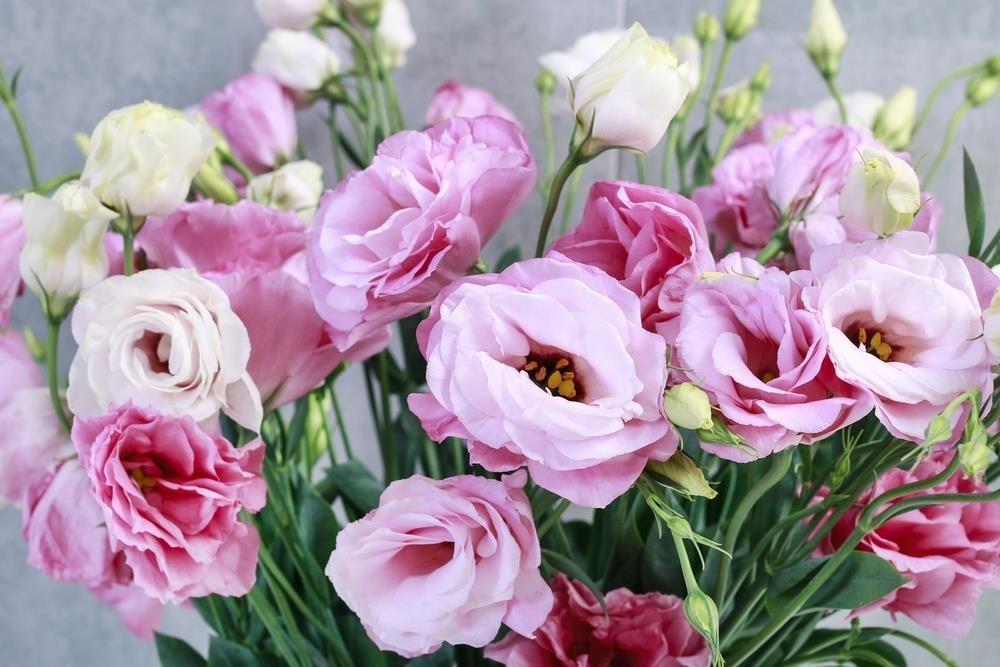 9 loai hoa dat nhat hanh tinh, co loai den vang 9999 cung khong la gi hinh anh 21