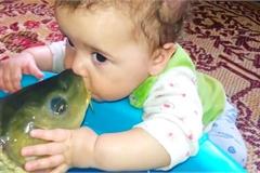 Phản ứng của nhóc tỳ lần đầu chạm vào sinh vật dưới nước này khiến bạn bật cười