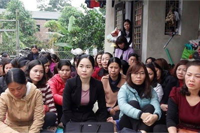238 thí sinh bỏ thi viên chức giáo dục