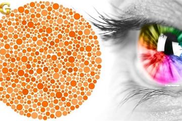 Bài test thị giác cực khó: Chỉ có ai cực nhạy cảm về màu sắc mới vượt qua được