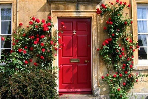Màu sắc cửa chính và những điều tối kỵ