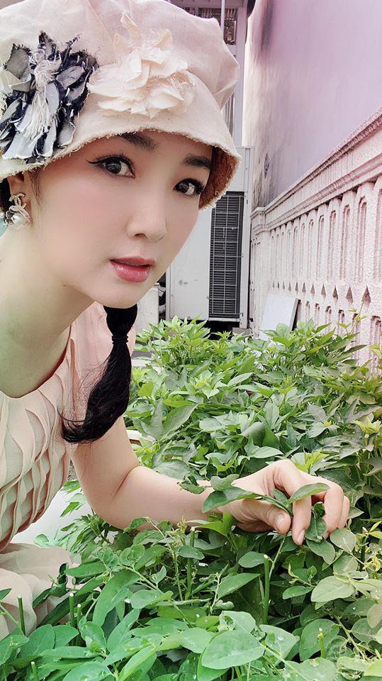 Hoa hậu Giáng My trồng rau và hoa quanh biệt thự trong lúc ở nhà trốn Covid-19 - Ảnh 6.