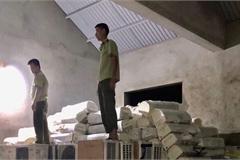 Thu giữ lô hàng thực phẩm bảo vệ sức khỏe tinh chất thông đỏ, sản xuất tại Hàn Quốc