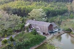 Cuộc sống tiên cảnh tại ngôi nhà bên sườn đồi ở Đà Nẵng