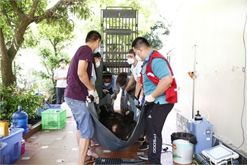 No more bars for two Asiatic black bears in Vietnam's northern province