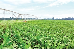 Modern strategies vital for agricultural funding surge