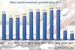 Economic momentum in 2021 takes a knock