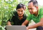 Broader digital application needed in agriculture