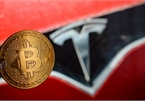 With Tesla's backing, can Bitcoin become gold?