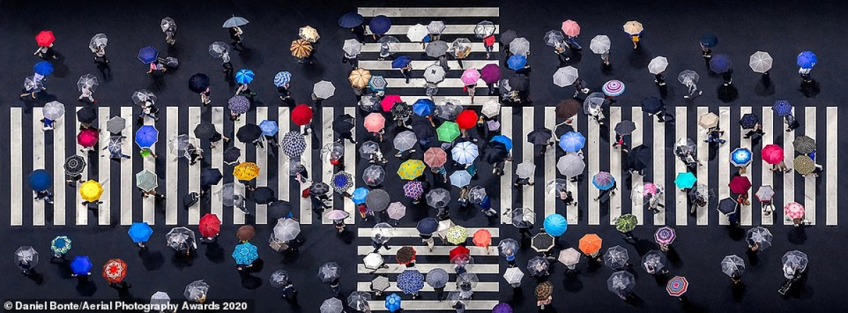 In the Patterns category, this photo of multiple umbrellas crossing each other in the streets in Tokyo, taken by German photographer Daniel Bonte, secures a top-place finish.