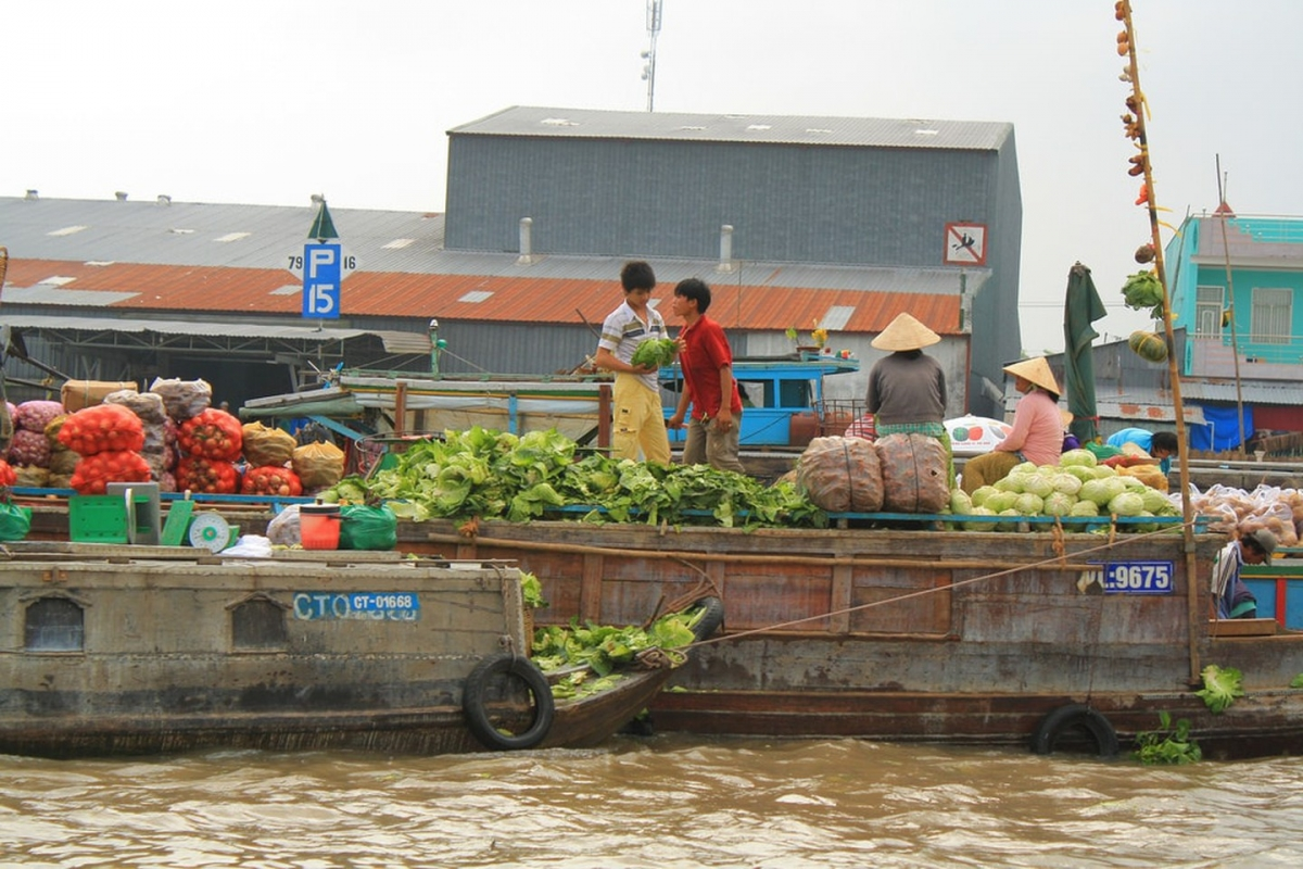 Visiting the floating markets on the Mekong Delta. Seeing the fantastic Mekong Delta floating markets is an unforgettable experience. The site is a hive of activity with plenty of trading taking place throughout the area's muddied waters, whilst featuring a full spectrum of colours, sights, and sounds.