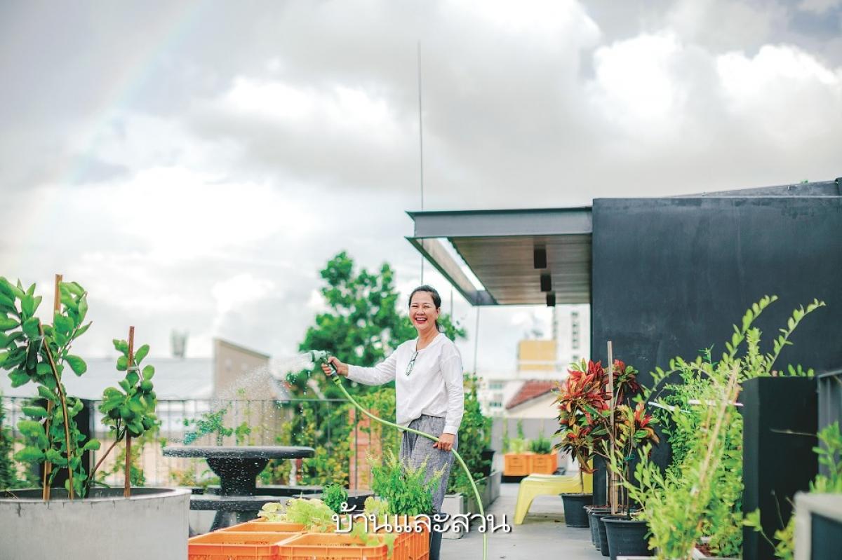 Khu vườn trên sân thượng chính là không gian tuyệt vời nhất, mang lại sự trong lành, dễ chịu đồng thời tạo nguồn cảm hứng tận cho cuộc sống, công việc./.