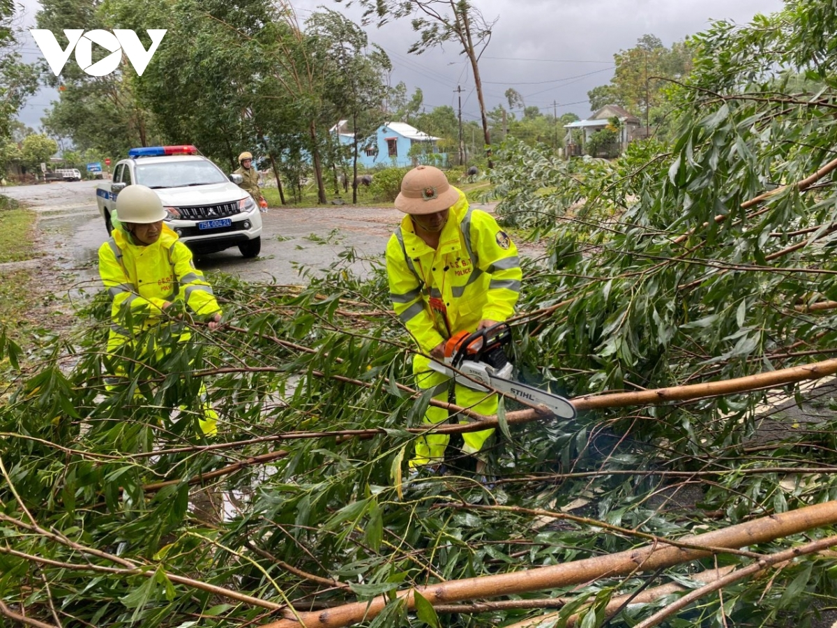 Trees collapse on national highway 1A in Phu Loc district, Thua Thien-Hue province.