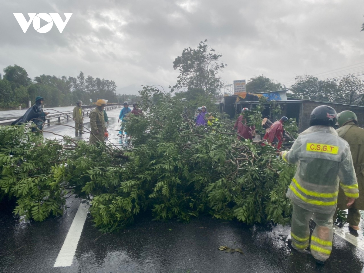 Relevant forces have been mobilized to clear fallen trees and regulate traffic.
