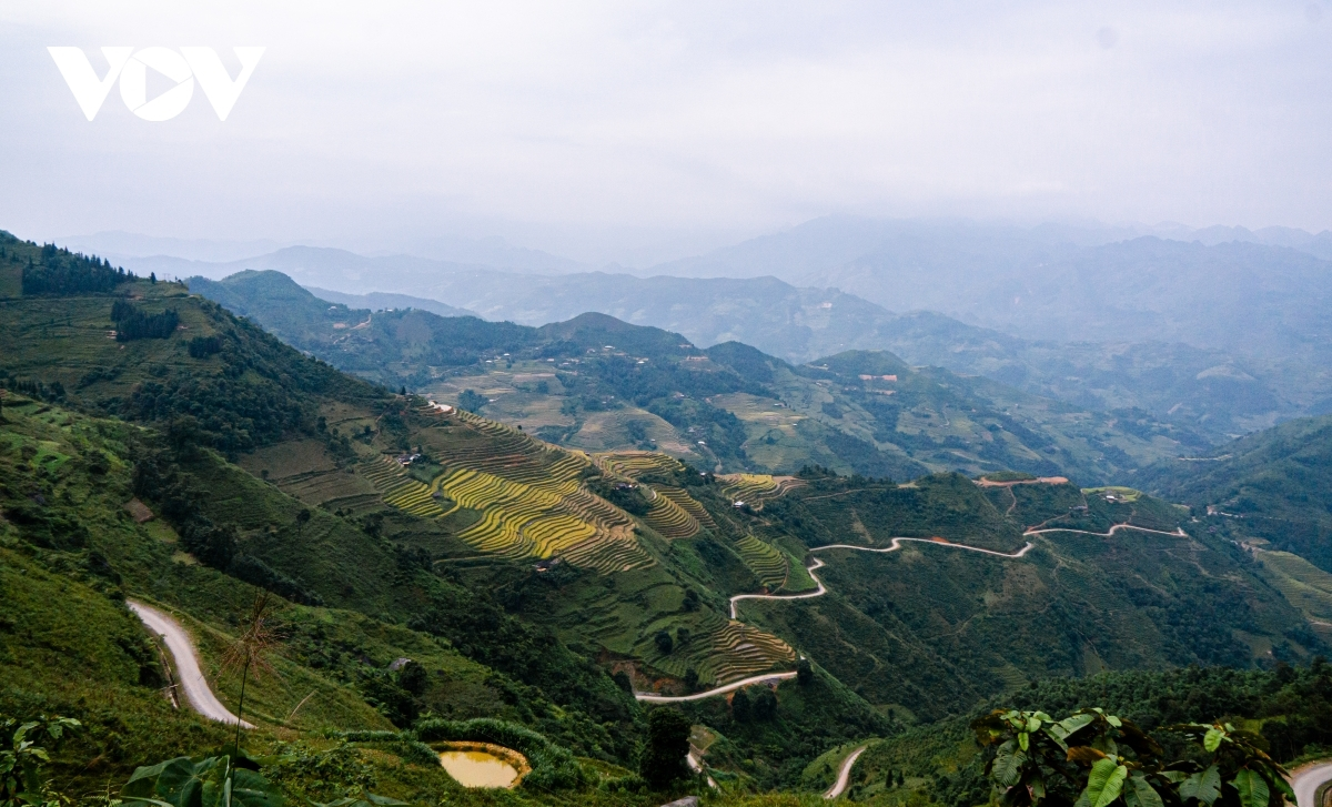 A glimpse of the pristine beauty of terraced fields in Yen Minh district