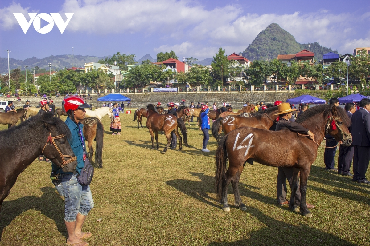 Horse racing is an indispensable game of local people during the festival
