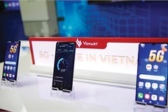 Global vision essential for Vietnam's technology brands