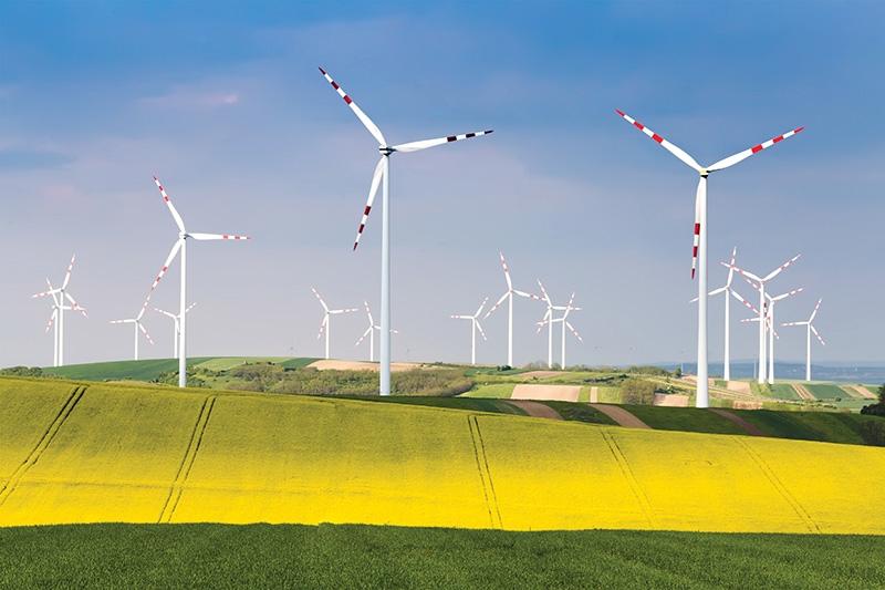 financiers race to cash in on wind