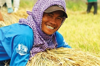 Halting rice exports to stabilise food supplies