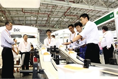 Foreign partners help to lay foundations for Vietnam's rise