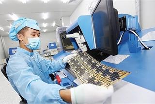 Revenues plummet amid global health emergency