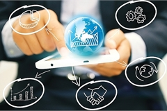 Investment promotion on the world wide web