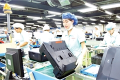EVFTA promises an enhanced Vietnam