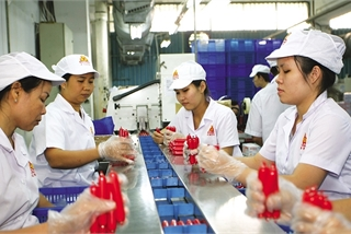 Revising key laws to lead Vietnam into the new era