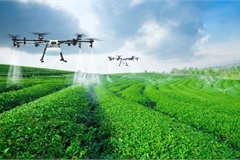 High-tech contribution to agriculture