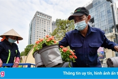 The country's largest flower street taking shape in HCM City