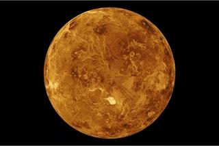 Sự sống trên Kim Tinh có thể đến từ Trái Đất?