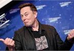 Công ty tăng trưởng 12 lần vì trùng tên ứng dụng chat của Elon Musk