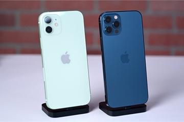 Bước vào 'siêu chu kỳ', iPhone 12 hứa hẹn lập kỷ lục doanh số