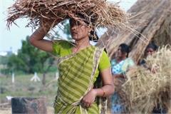 Bên trong thị trấn dành riêng cho phụ nữ chuyển giới ở Ấn Độ