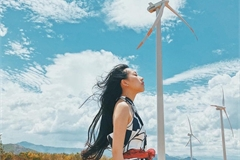 Four wind farms attract tourists