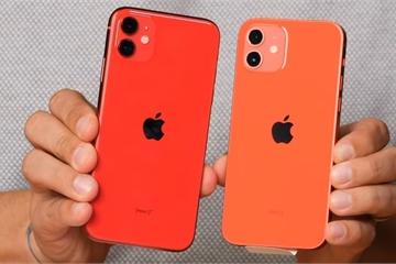iPhone 12 mini bản Hàn Quốc có giá rẻ về Việt Nam