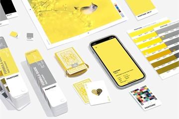 iPhone 11 và loạt sản phẩm công nghệ mang 'màu sắc của năm 2021'