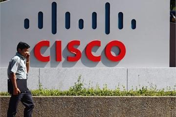 Người Ấn ruồng bỏ đồng hương ở thung lũng Silicon