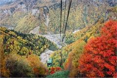 Vùng đất đón mùa thu sớm nhất Nhật Bản
