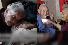 Đôi vợ chồng 100 tuổi khiến cộng đồng mạng ghen tị vì sự ngọt ngào