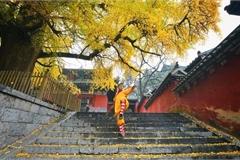 Mùa thu đẹp ở các địa danh trong truyện Kim Dung
