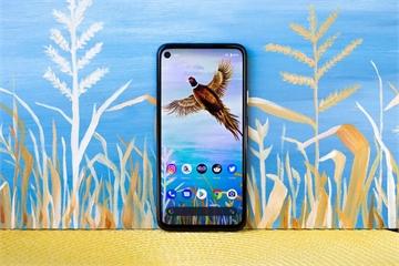 Google ra mắt Pixel 5 sản xuất tại Việt Nam