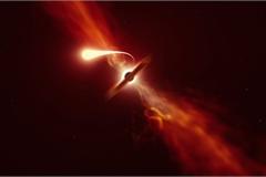 Vệt sáng thông báo cái chết của một ngôi sao