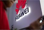 Huawei trọng thương vì cú đòn của Tổng thống Mỹ Donald Trump